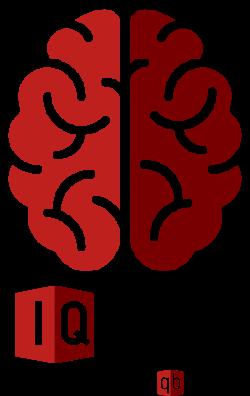 IQ test fast precise